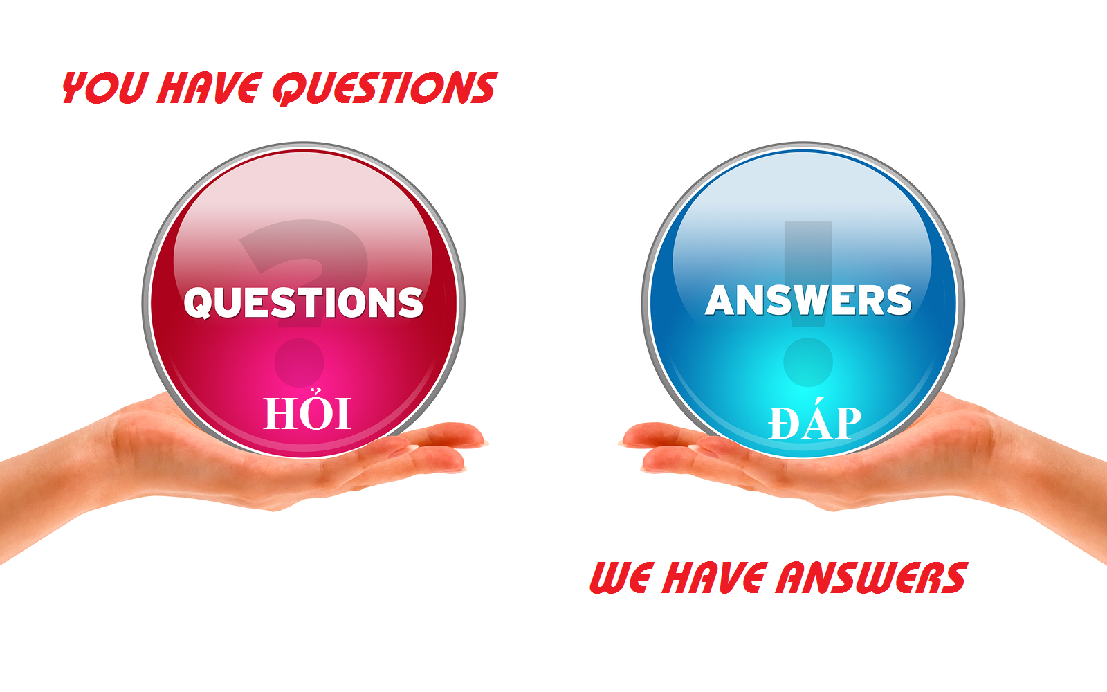 Question and Answer Copy